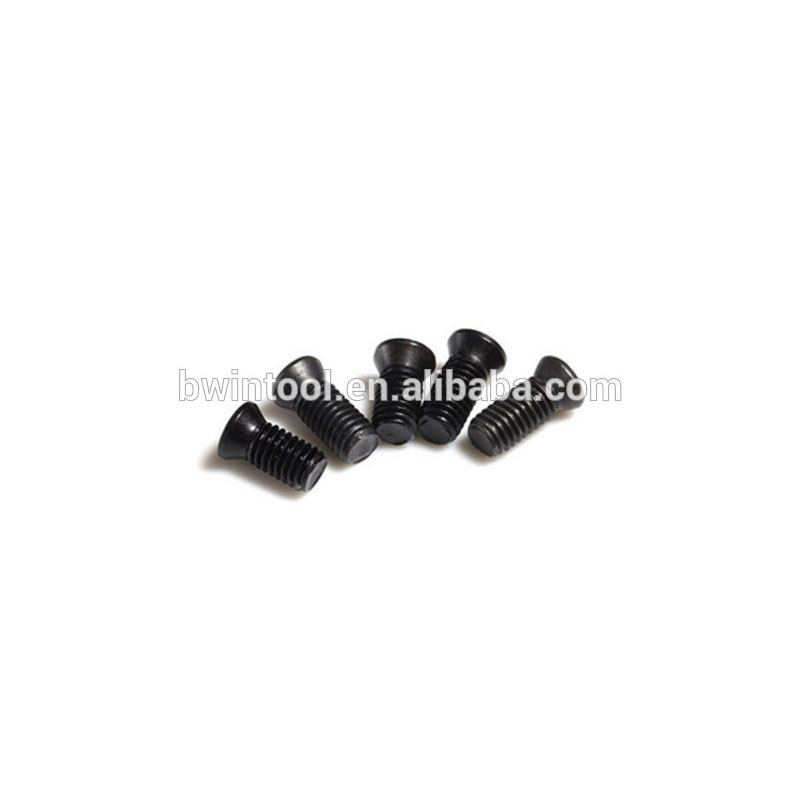 Iso All Size Torx Screw M4X10 For Spanner