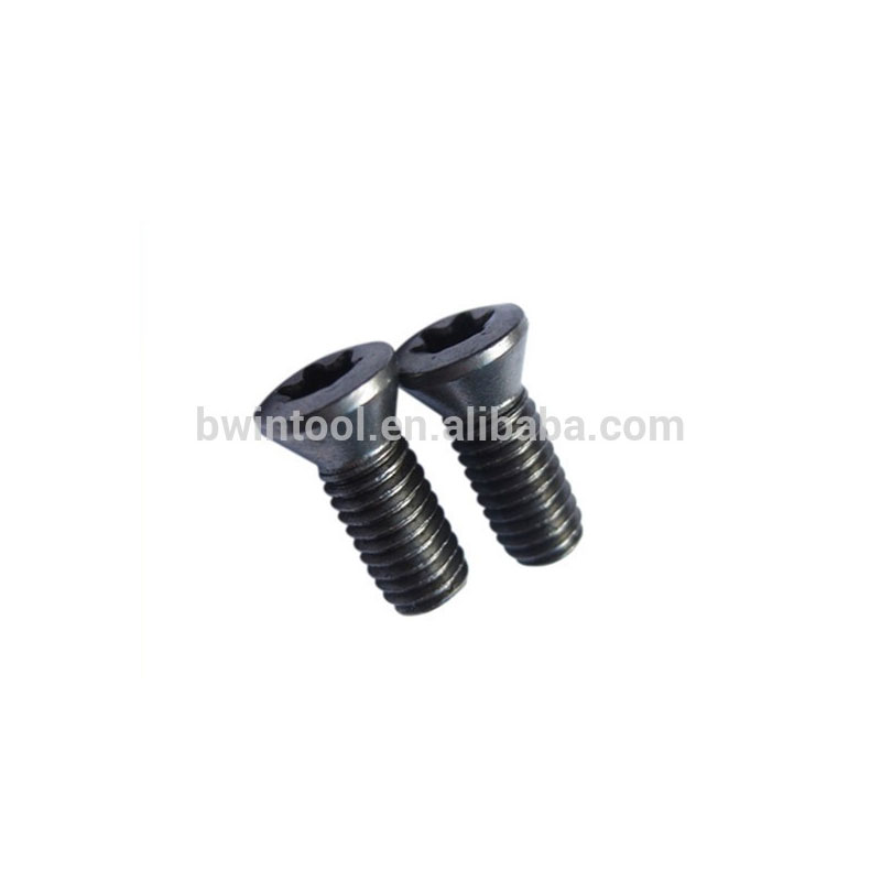 Made in China Torx Head Screw M2.5*6 torx screw